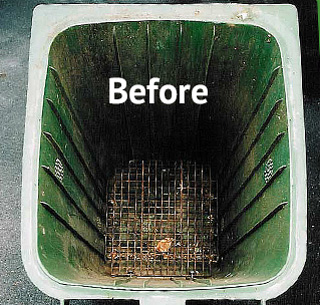 before bin cleaning